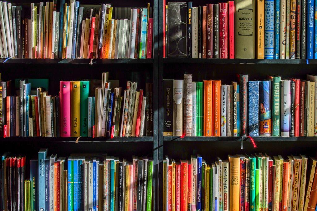"""""""Punguța cu două cărți"""""""