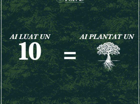 10 din sesiune = un copac plantat