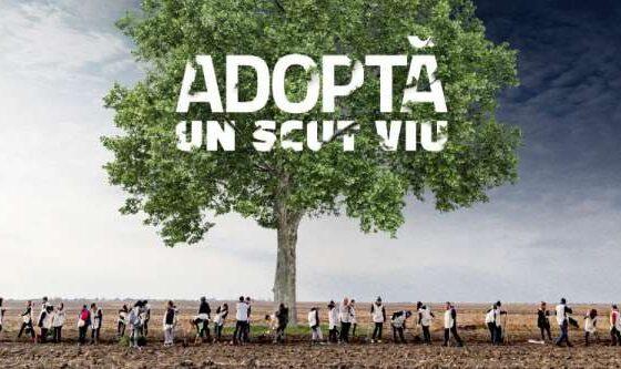 Prima plantare virtuală din România